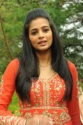 Malayalam Actress Priyamani Photos 9646