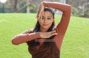 Priyamani Images 434
