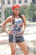 Priyamani In Spicy Dress 595