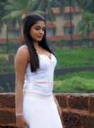 Priyamani Indian Actress Jan 2017 Galleries 2292