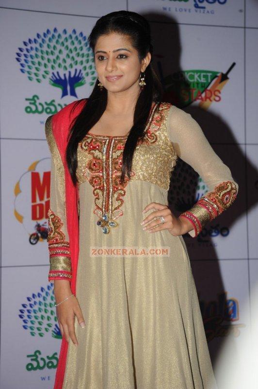 Priyamani Malayalam Heroine Recent Photo 3709