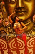 Priyamani New Pictures 1