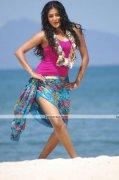 Priyamani New Pictures 11