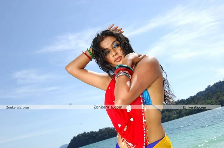 Priyamani New Pictures 14