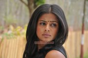 Priyamani Photos 4599