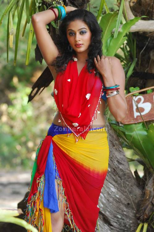 Priyamani Spicy Picture10