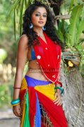 Priyamani Spicy Picture11