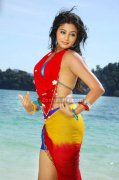 Priyamani Spicy Picture12