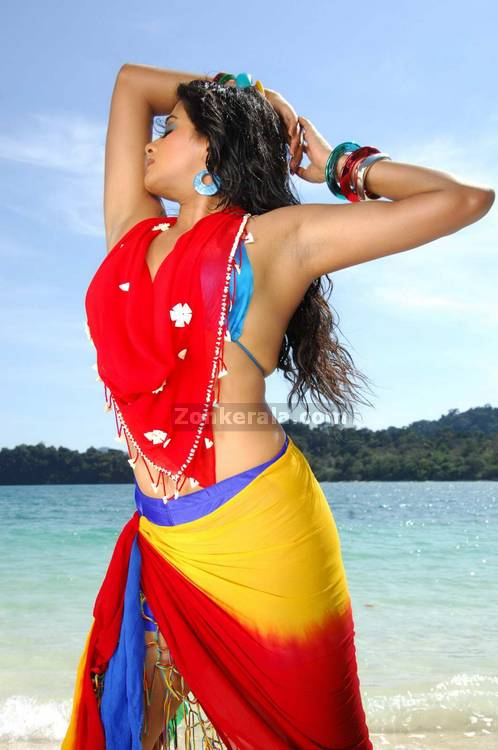 Priyamani Spicy Picture13