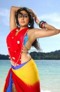 Priyamani Spicy Picture14