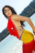 Priyamani Spicy Picture15