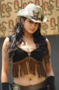 Priyamani Spicy Picture2