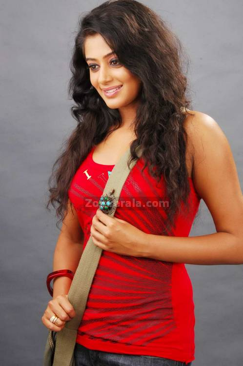 Priyamani Spicy Picture5