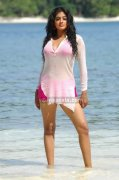 Priyamani Spicy Picture8