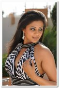 Priyamani Spicy Stills 4