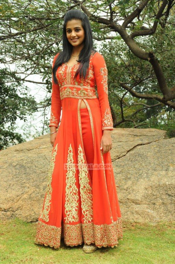 Priyamani Stills 5945