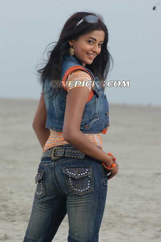 South Indian Actress Priyamani1