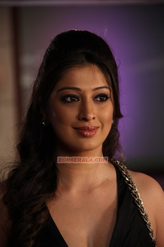 2016 Photos Malayalam Actress Raai Laxmi 2121