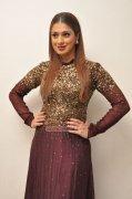 Album Raai Laxmi Indian Actress 8084