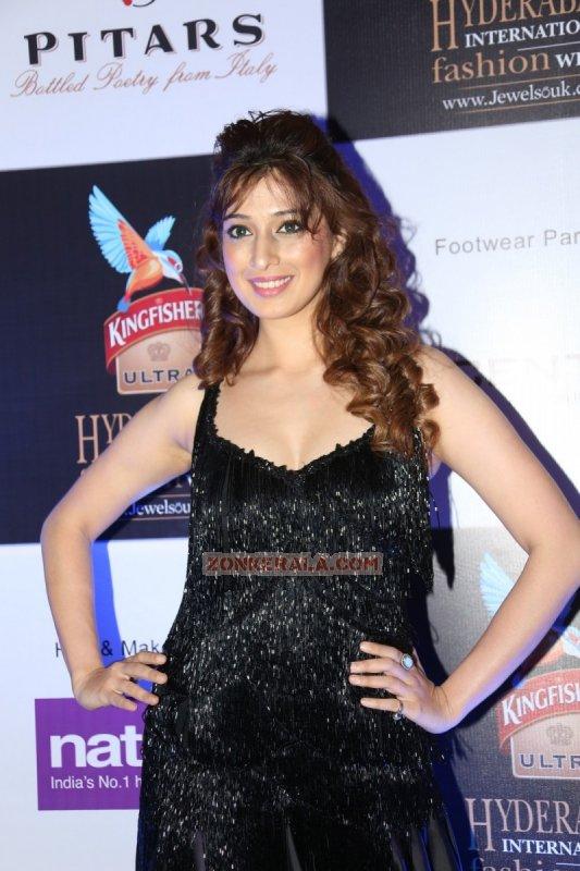 Cinema Actress Raai Laxmi Dec 2014 Image 6722