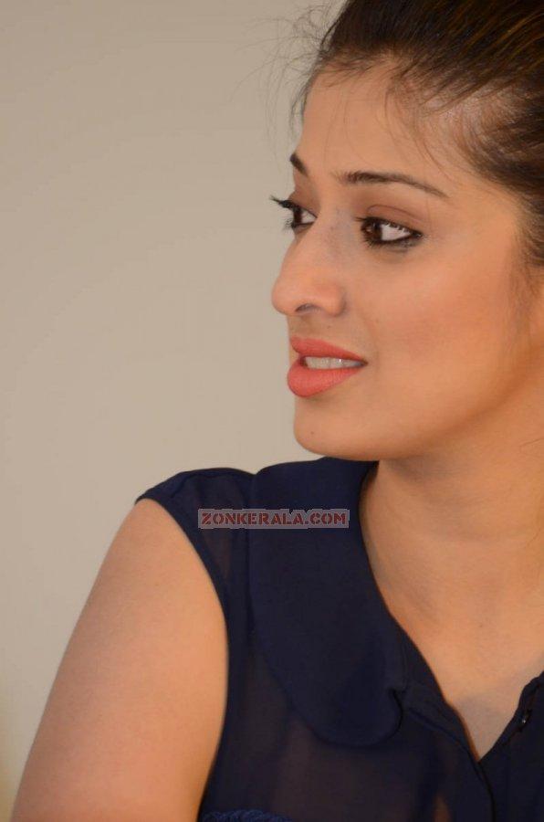 Malayalam Actress Raai Laxmi 8725