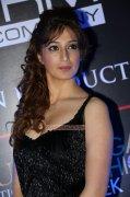 Malayalam Movie Actress Raai Laxmi Latest Pic 6772