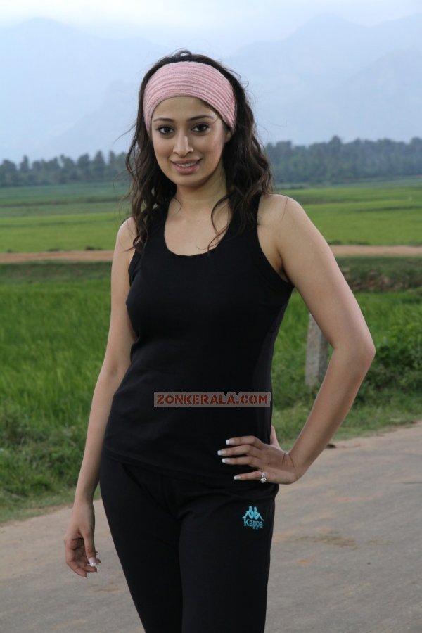 Oct 2014 Album Actress Raai Laxmi 9216