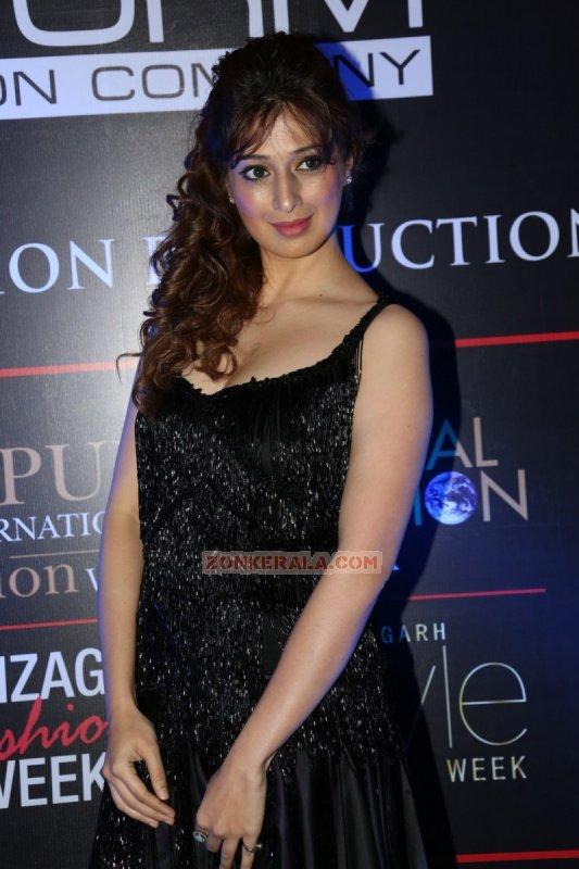 Raai Laxmi Cinema Actress Recent Pictures 4001