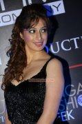 Raai Laxmi Malayalam Movie Actress 2014 Images 6695