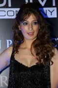 Raai Laxmi Malayalam Movie Actress Dec 2014 Still 4172
