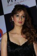 Raai Laxmi Malayalam Movie Actress Recent Photos 8677