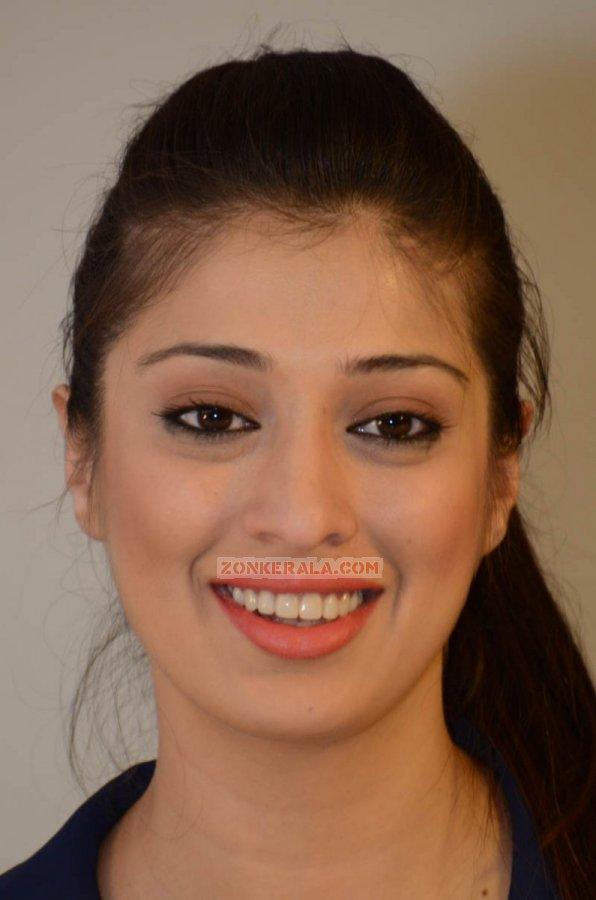 Raai Laxmi Stills 517