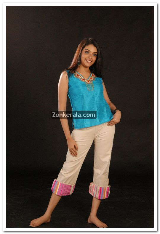 Malayalam Actress Radhika Photos 11 - Malayalam Actress Radhika Photos