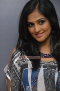 Actress Remya Nambeesan Photo 463