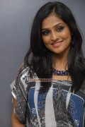 Actress Remya Nambeesan Picture 320
