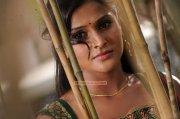 Actress Remya Nambeesan Stills 4087