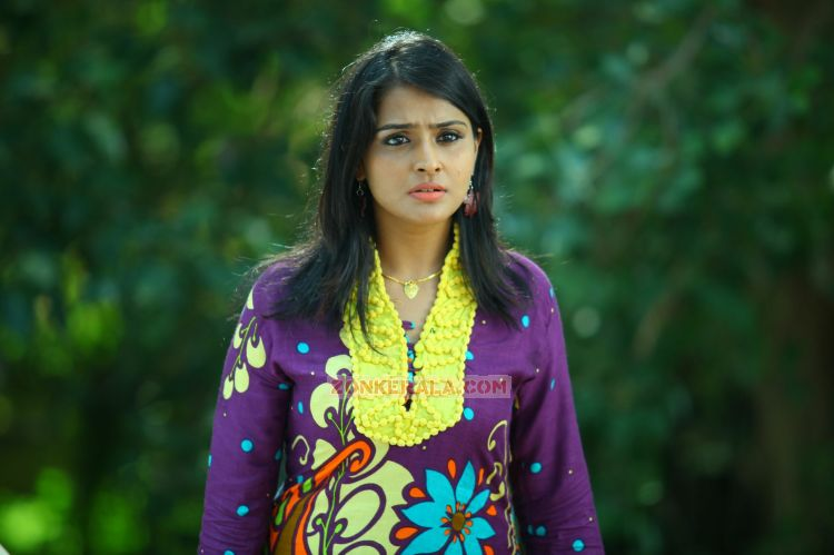 Malayalam Actress Remya Nambeesan 369