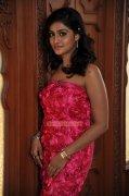 Malayalam Actress Remya Nambeesan 397