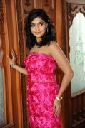 Malayalam Actress Remya Nambeesan 4096