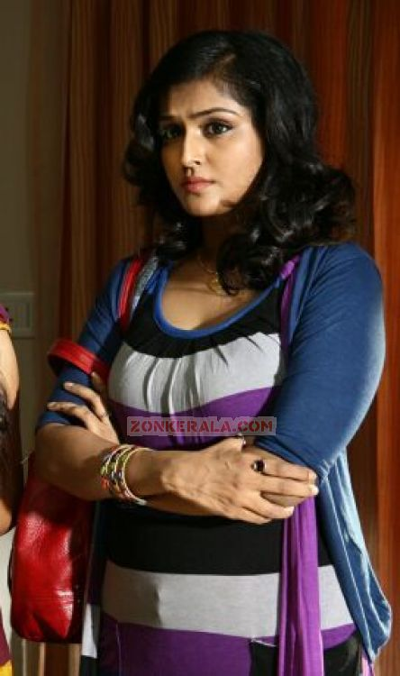 Malayalam Actress Remya Nambeesan 4970