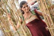 Malayalam Actress Remya Nambeesan Photos 8917