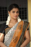 New Album Remya Nambeesan Actress 3064