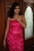 Remya Nambeesan 2805