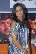 Remya Nambeesan Photo 483