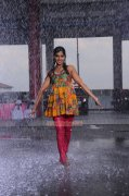 Remya Nambeesan Photos 4661