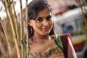 Remya Nambeesan Photos 5257
