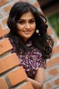 Remya Nambeesan Photos 8470