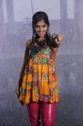 Remya Nambeesan Stills 8072