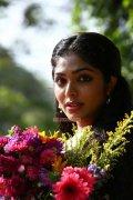 Malayalam Actress Rima Kallingal 6245
