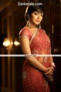 Rima Kallingal In Saree Still 1